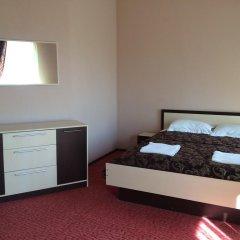 Гостиница Гостинично-оздоровительный комплекс Живая вода 4* Стандартный номер разные типы кроватей фото 2