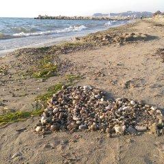 Отель Enera Албания, Голем - отзывы, цены и фото номеров - забронировать отель Enera онлайн пляж фото 2