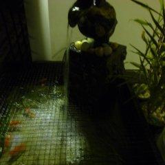 Отель Taprobane Home Stay - Negombo спа