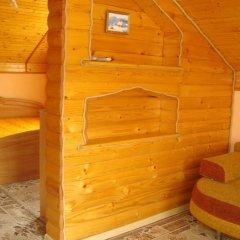 Гостиница Карпатський маєток удобства в номере фото 2