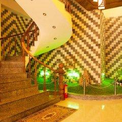 Отель Hoa Mau Don Homestay интерьер отеля