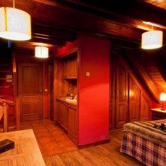 Gran Chalet Hotel & Petit Spa 3* Номер Премиум разные типы кроватей фото 6