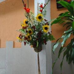 Отель Gusto Tropical Hotel Доминикана, Бока Чика - отзывы, цены и фото номеров - забронировать отель Gusto Tropical Hotel онлайн помещение для мероприятий