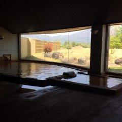 Отель Nari Aizu Lodge Айдзувакамацу бассейн фото 3