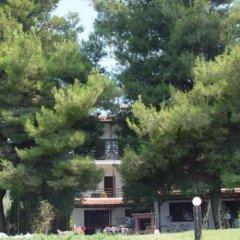 Отель Para Thin Alos Греция, Ситония - отзывы, цены и фото номеров - забронировать отель Para Thin Alos онлайн фото 30