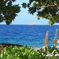 Отель Green Lodge Moorea Французская Полинезия, Папеэте - отзывы, цены и фото номеров - забронировать отель Green Lodge Moorea онлайн приотельная территория