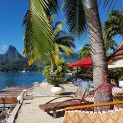 Отель Villa Oramarama by Tahiti Homes Французская Полинезия, Папеэте - отзывы, цены и фото номеров - забронировать отель Villa Oramarama by Tahiti Homes онлайн бассейн