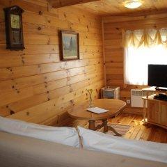 Отель Ski Chalet Borovets комната для гостей фото 5