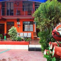 Отель N Vanessa Мексика, Сан-Хосе-дель-Кабо - отзывы, цены и фото номеров - забронировать отель N Vanessa онлайн фото 4