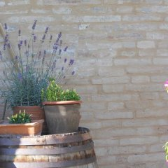 Отель Agriturismo Bassarì Реканати фото 14