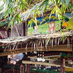 Leaf House Bungalow - Hostel Кровать в общем номере с двухъярусной кроватью фото 4