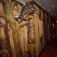 Гостиница Барракуда Большой Геленджик сауна