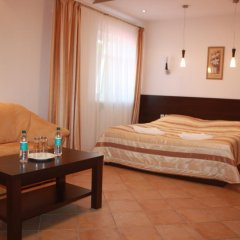Гостиница Беккер 3* Стандартный номер разные типы кроватей фото 2