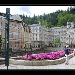 Отель Pension Napoleon Чехия, Карловы Вары - отзывы, цены и фото номеров - забронировать отель Pension Napoleon онлайн спа