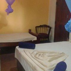 Отель Leopard Den Стандартный номер с различными типами кроватей фото 10