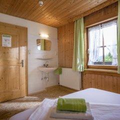 Отель Berggasthof Veitenhof Стандартный номер с различными типами кроватей фото 5