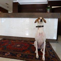 Отель Du Soleil Италия, Римини - отзывы, цены и фото номеров - забронировать отель Du Soleil онлайн спа