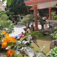 Отель Villa Pink House Вьетнам, Далат - отзывы, цены и фото номеров - забронировать отель Villa Pink House онлайн фото 4
