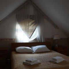 Гостиница Вилла Татьяна на Верхнеозёрной Стандартный номер с двуспальной кроватью фото 4