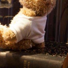 Отель De Barge Бельгия, Брюгге - отзывы, цены и фото номеров - забронировать отель De Barge онлайн с домашними животными