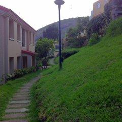 Отель Hill Country Lovedale фото 7