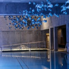 Отель Roros Hotell бассейн