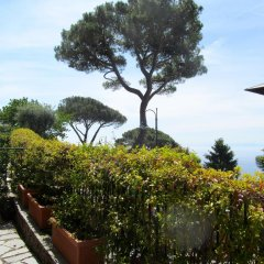 Отель H2.0 Portofino Италия, Камогли - отзывы, цены и фото номеров - забронировать отель H2.0 Portofino онлайн фото 5