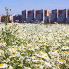 Гостиница Hostel Plekhanovo в Тюмени отзывы, цены и фото номеров - забронировать гостиницу Hostel Plekhanovo онлайн Тюмень фото 2