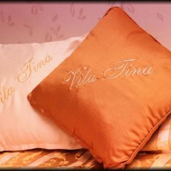 Hotel Vila Tina 3* Номер категории Эконом с двуспальной кроватью фото 3