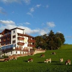 Отель Pension Schlaneiderhof 2* Стандартный номер фото 2