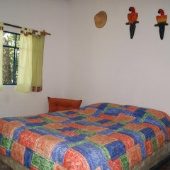 Hotel Cabanas Paradise комната для гостей фото 4