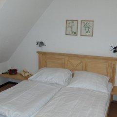 Ferien- und Reitsport Hotel Brunnenhof 3* Стандартный номер с различными типами кроватей фото 3