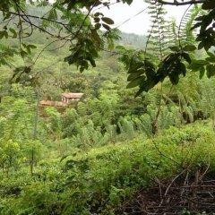Отель Villa 4 Sinharaja фото 17