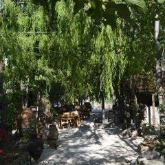 Kas Dogapark Турция, Патара - отзывы, цены и фото номеров - забронировать отель Kas Dogapark онлайн