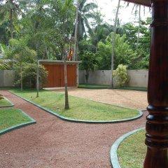 Отель Coco Cabana Шри-Ланка, Бентота - отзывы, цены и фото номеров - забронировать отель Coco Cabana онлайн развлечения