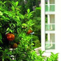 Отель Dubrovnik Luxury Residence-L`Orangerie фото 5