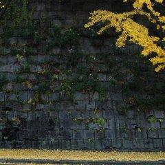 Отель Sodam Hanok Guesthouse Южная Корея, Сеул - 1 отзыв об отеле, цены и фото номеров - забронировать отель Sodam Hanok Guesthouse онлайн фото 2