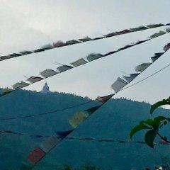Отель Lotus Inn Непал, Покхара - отзывы, цены и фото номеров - забронировать отель Lotus Inn онлайн фото 4