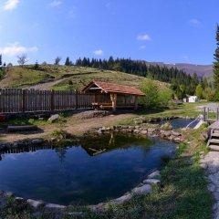 Отель Domik v Gorakh Guest House Поляна бассейн