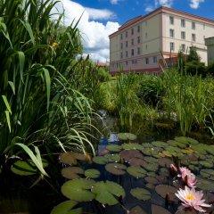 Отель Francis Palace Чехия, Франтишкови-Лазне - отзывы, цены и фото номеров - забронировать отель Francis Palace онлайн фото 8