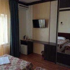 Гостиница Виноградная лоза удобства в номере