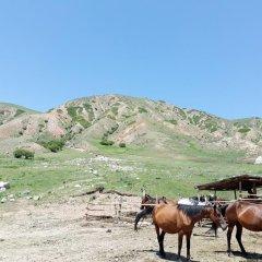 Отель GD Dinar Sky Кыргызстан, Каракол - отзывы, цены и фото номеров - забронировать отель GD Dinar Sky онлайн приотельная территория