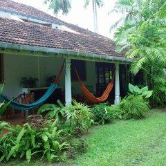 Отель Kahuna Hotel Шри-Ланка, Галле - 1 отзыв об отеле, цены и фото номеров - забронировать отель Kahuna Hotel онлайн фото 15