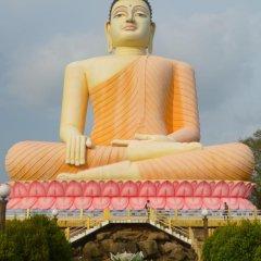 Отель Hemadan Шри-Ланка, Бентота - отзывы, цены и фото номеров - забронировать отель Hemadan онлайн фото 11