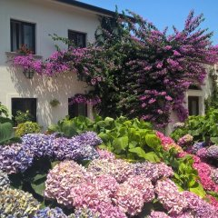 Отель Il Casale di Riardo B&B Сан-Никола-ла-Страда фото 4