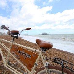 Отель Seadragon Backpackers Великобритания, Брайтон - отзывы, цены и фото номеров - забронировать отель Seadragon Backpackers онлайн пляж