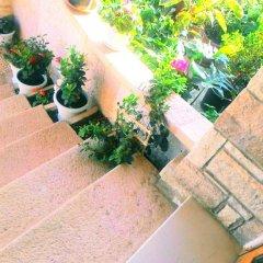 Hotel Castle фото 5