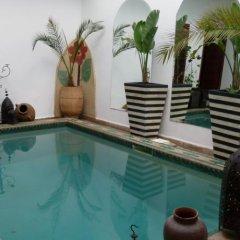 Отель Riad Al Warda бассейн