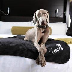 Vdara Hotel & Spa at ARIA Las Vegas 5* Люкс с двуспальной кроватью фото 8