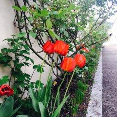 Отель Dghyak Pansion Дилижан фото 11